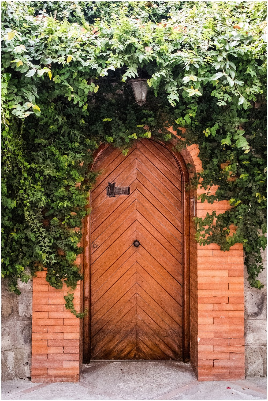 Italy_Doors_0006.jpg