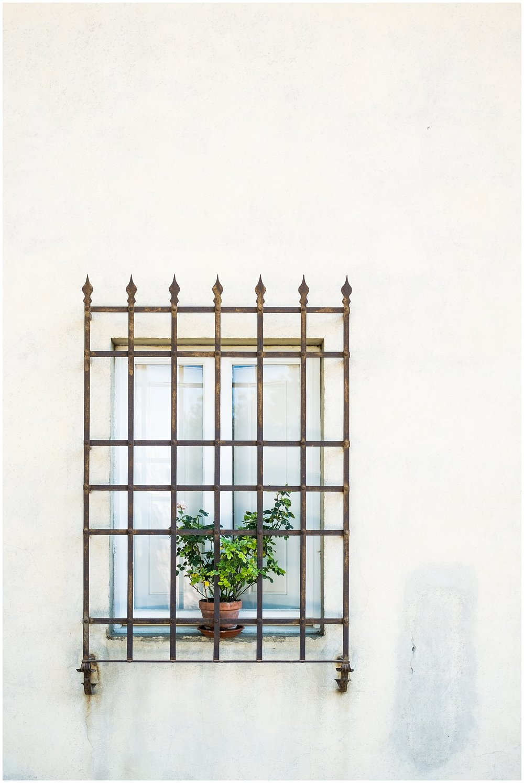 Italy_Doors_0019.jpg