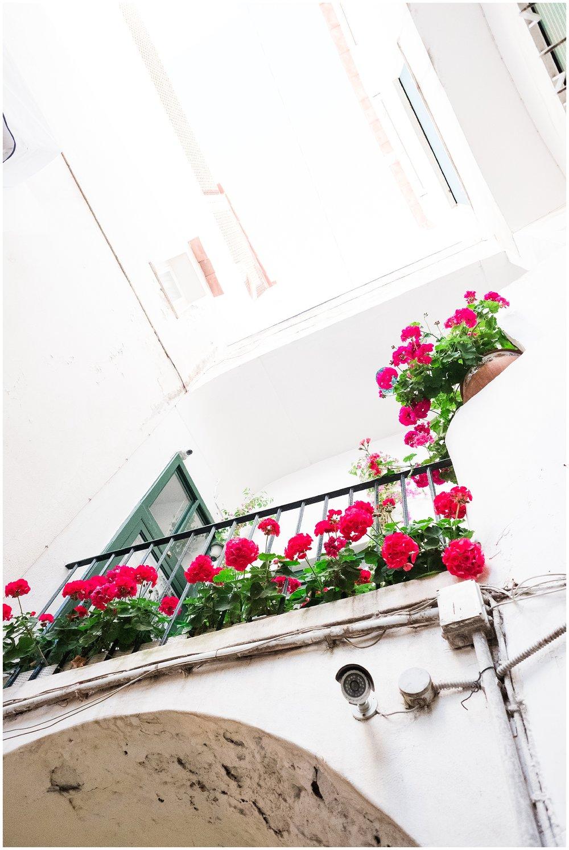 Capri_0005.jpg