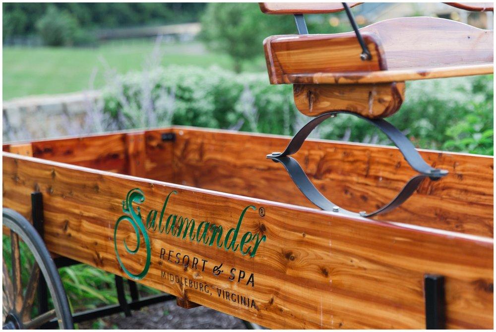 Salamander_Resort_July_0007.jpg