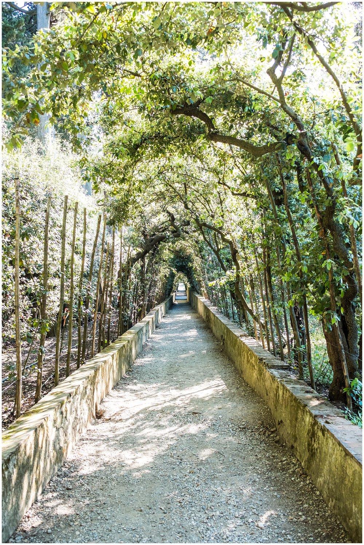 Capri_0131.jpg