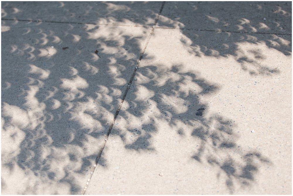 Eclipse_DC_0022.jpg