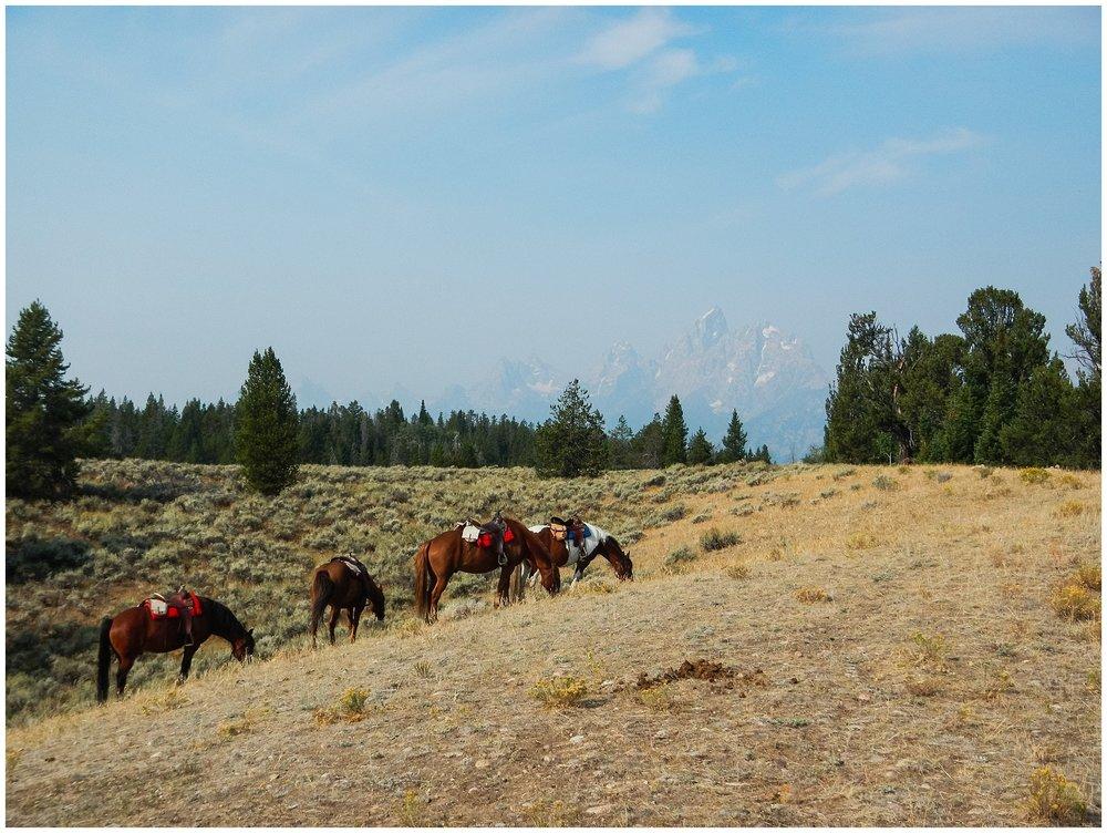 Ranch_Summer_0008.jpg