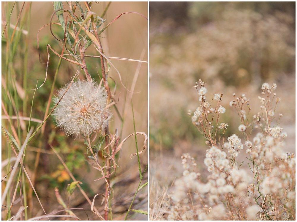 Ranch_Summer_0099.jpg