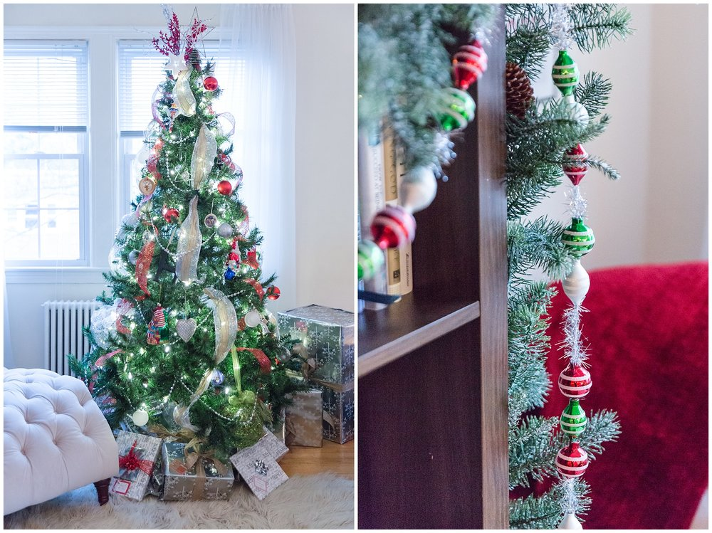 Christmas decorations_0002.jpg