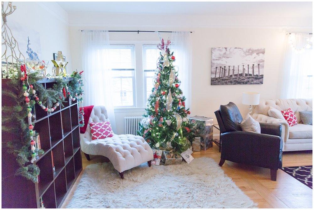 Christmas decorations_0024.jpg
