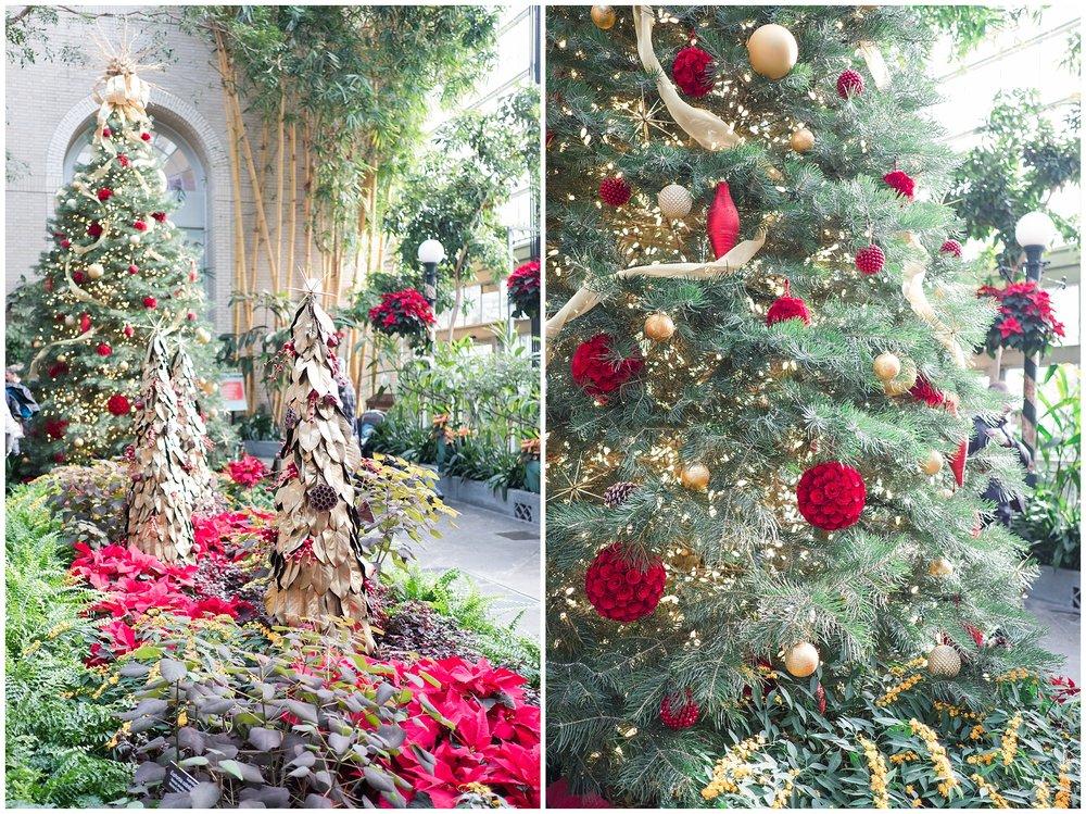 Christmas-blog_0088.jpg