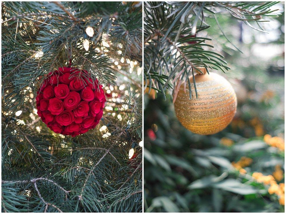 Christmas-blog_0089.jpg