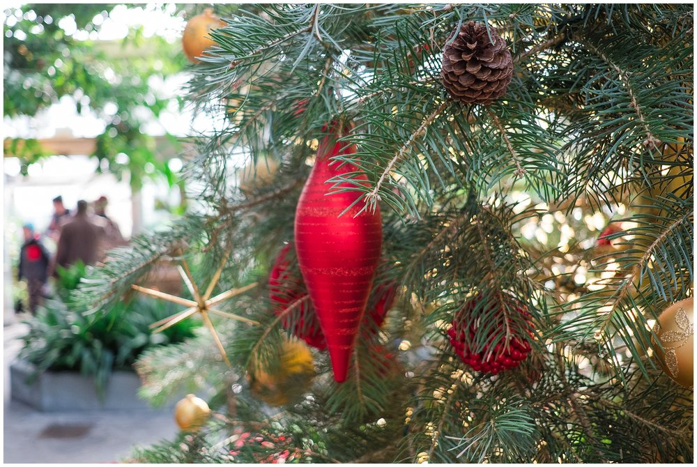 Christmas-blog_0092.jpg