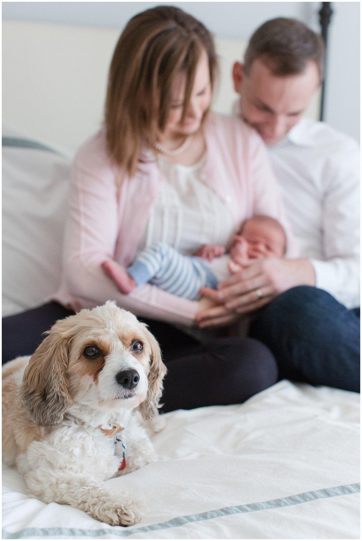 newborn_session_Hoynak_0006.jpg