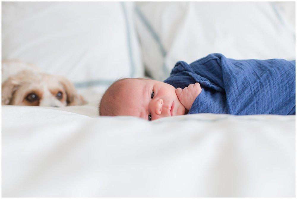newborn_session_Hoynak_0026.jpg