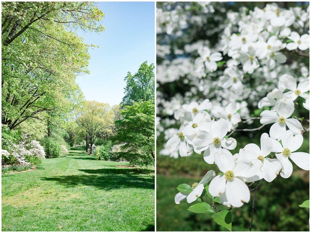 Arboretum_0004.jpg