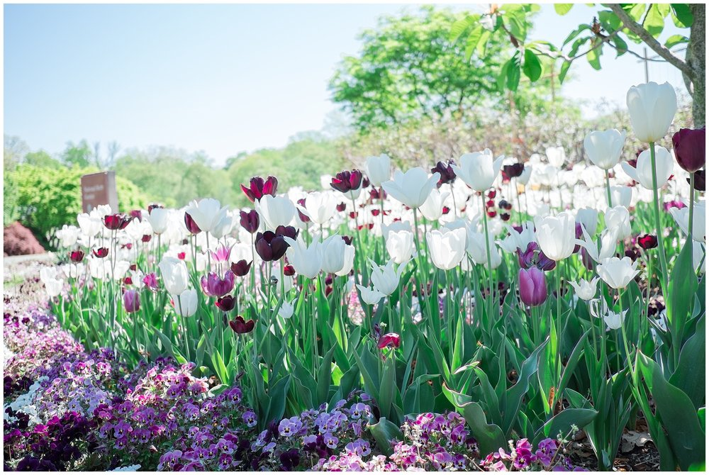 Arboretum_0013.jpg