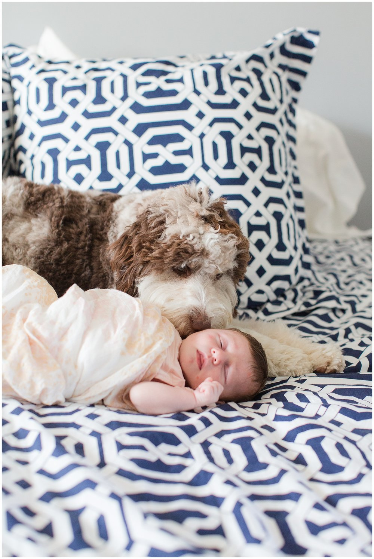 newborn_Roberts_0044.jpg