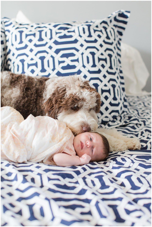 newborn_Roberts_0045.jpg