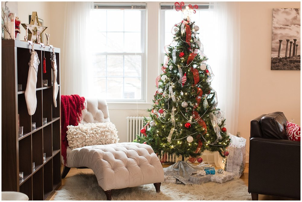 Christmasdecor_0008.jpg