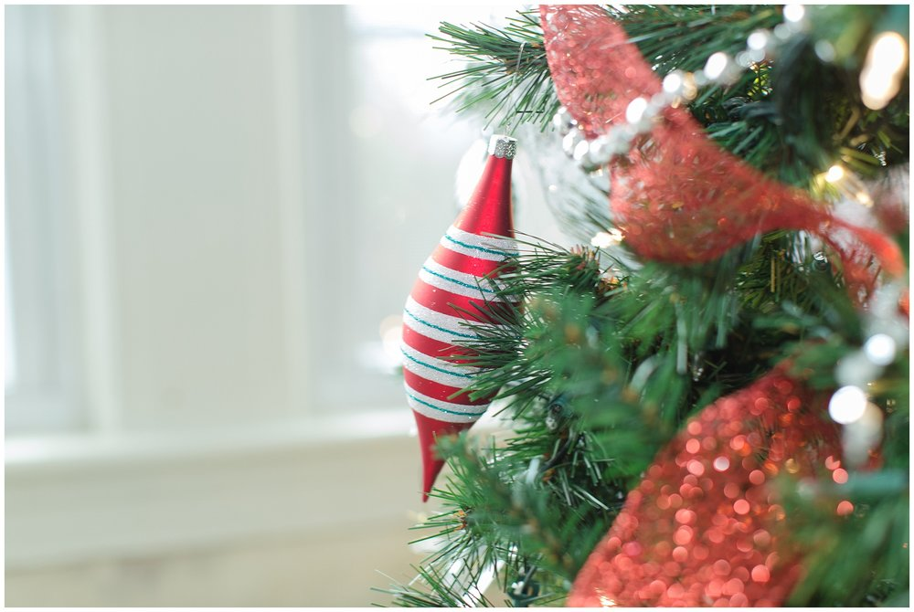 Christmasdecor_0016.jpg