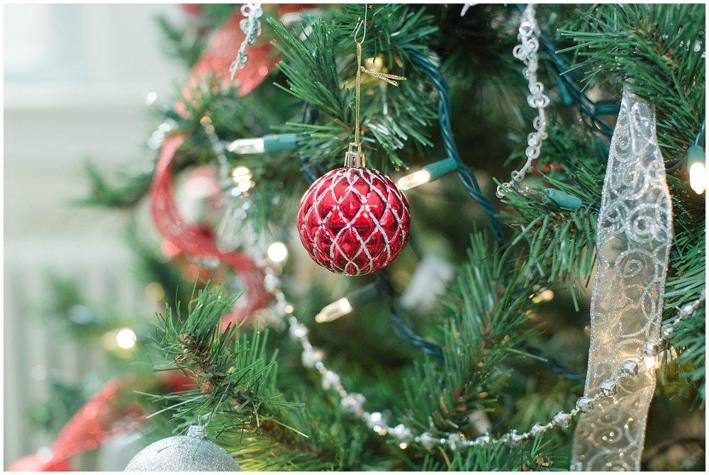 Christmasdecor_0017.jpg