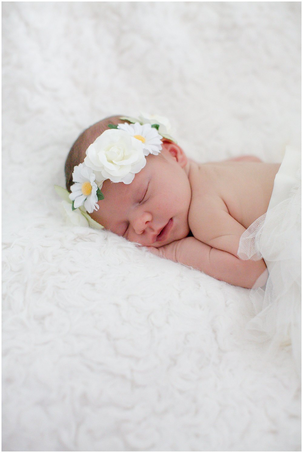 Letendre-newborn-session_0011.jpg