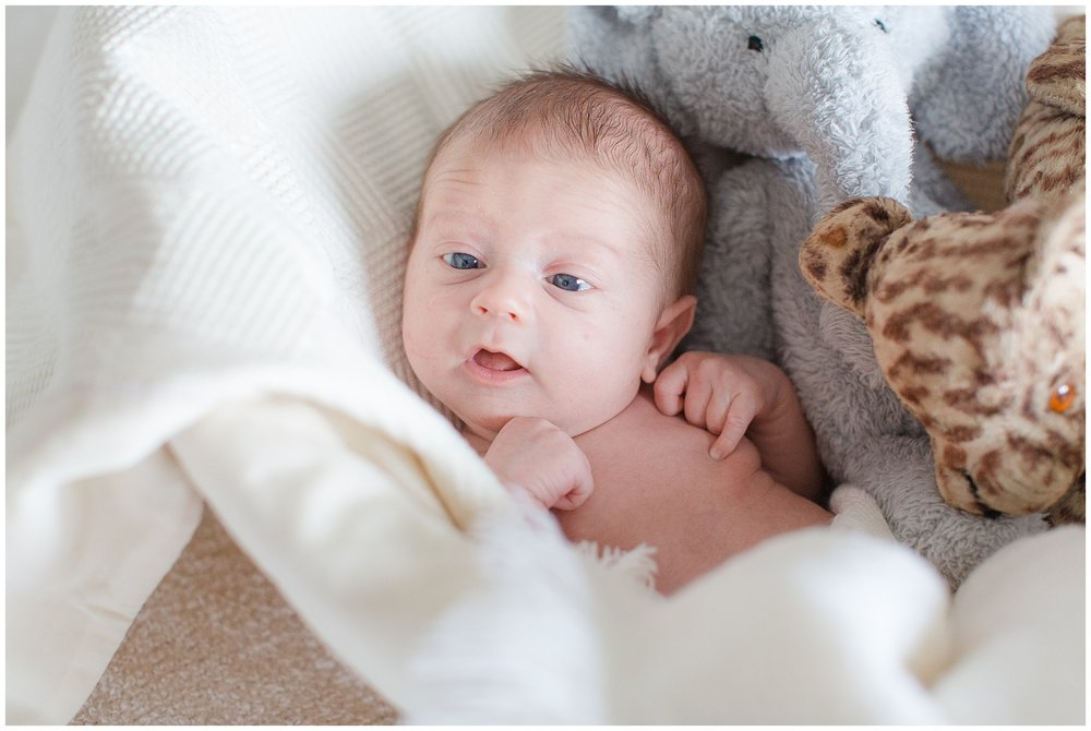 Brooker-newborn_0030.jpg