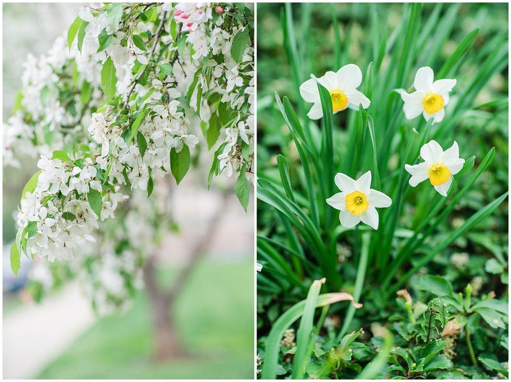 SpringWalk_0038.jpg