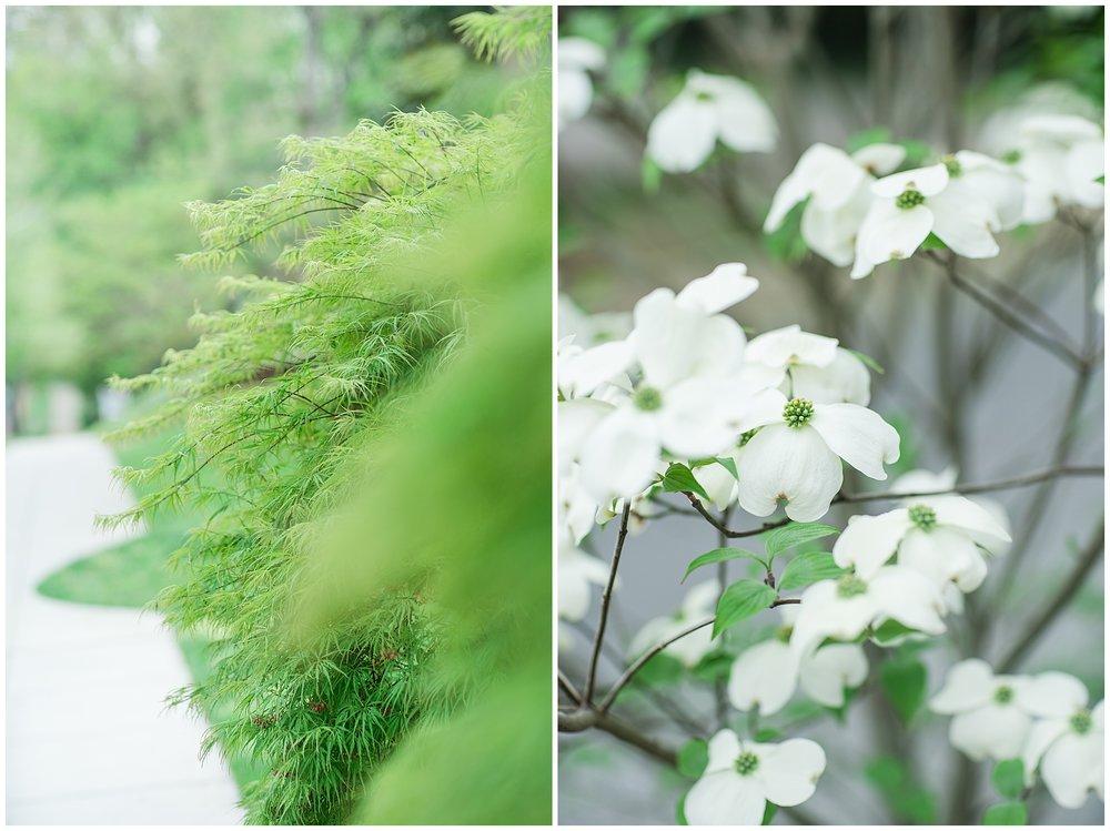 SpringWalk_0048.jpg
