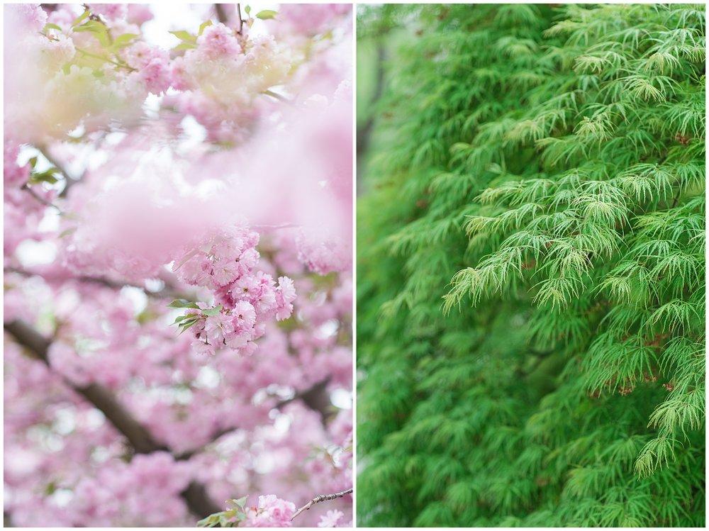 SpringWalk_0054.jpg