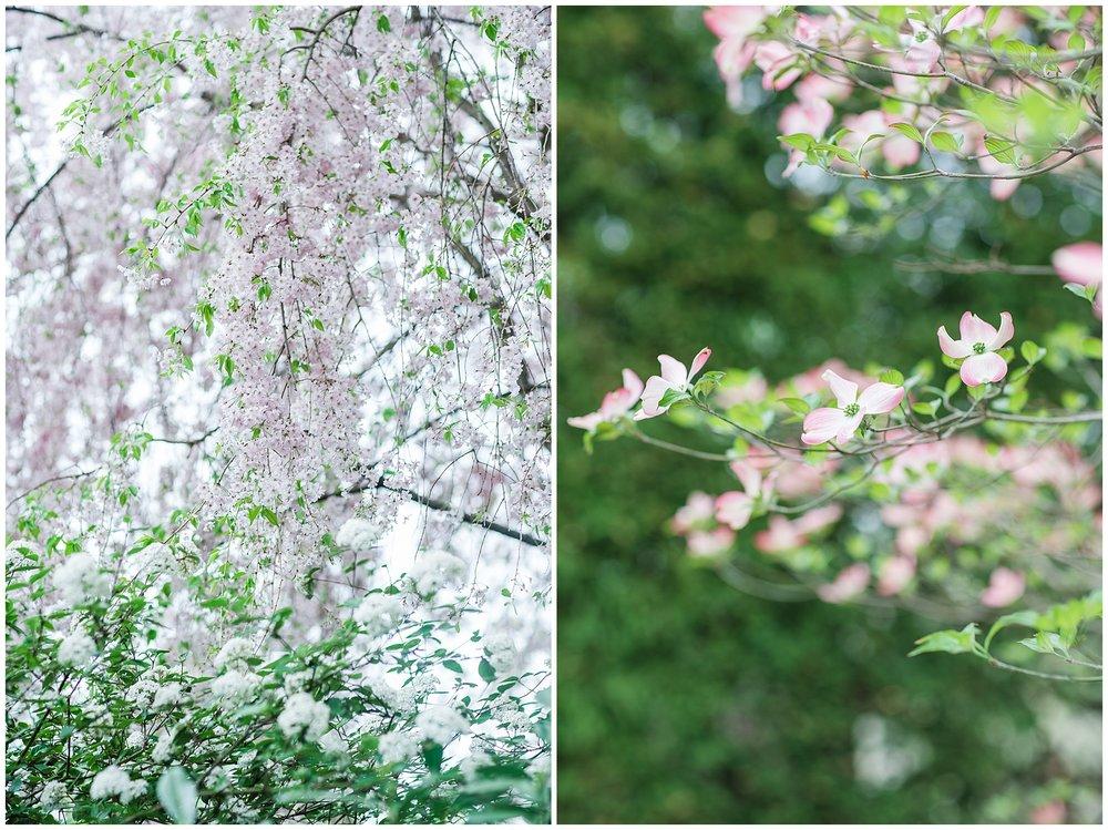 SpringWalk_0055.jpg