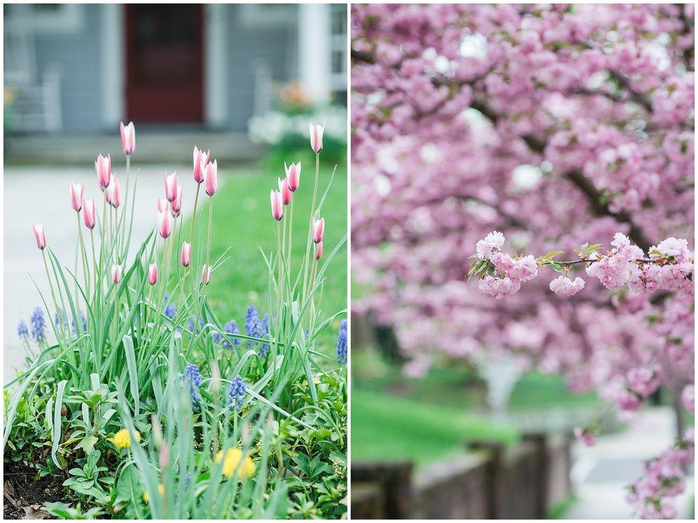 SpringWalk_0056.jpg