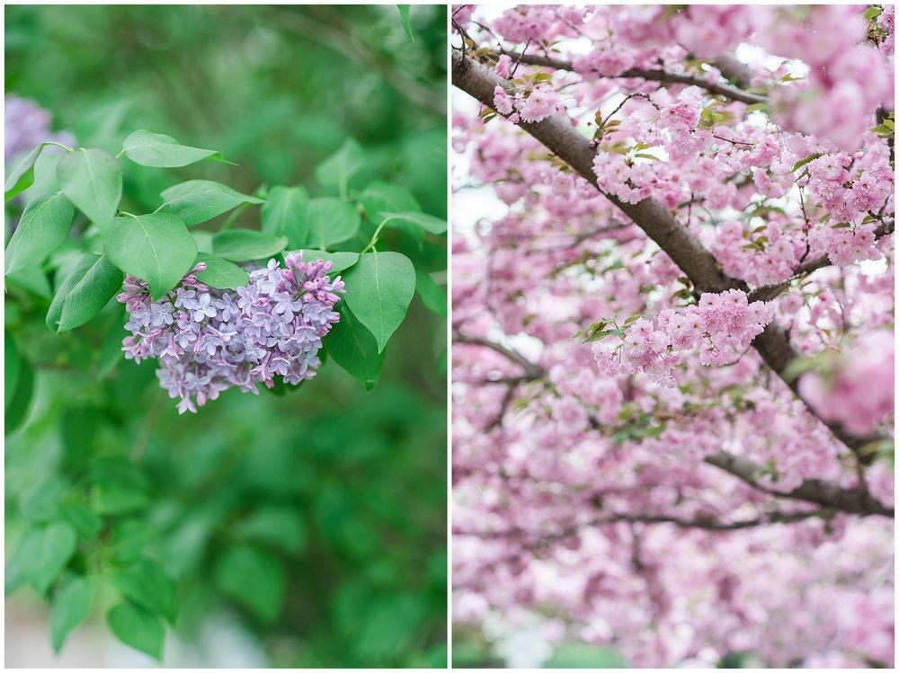 SpringWalk_0058.jpg