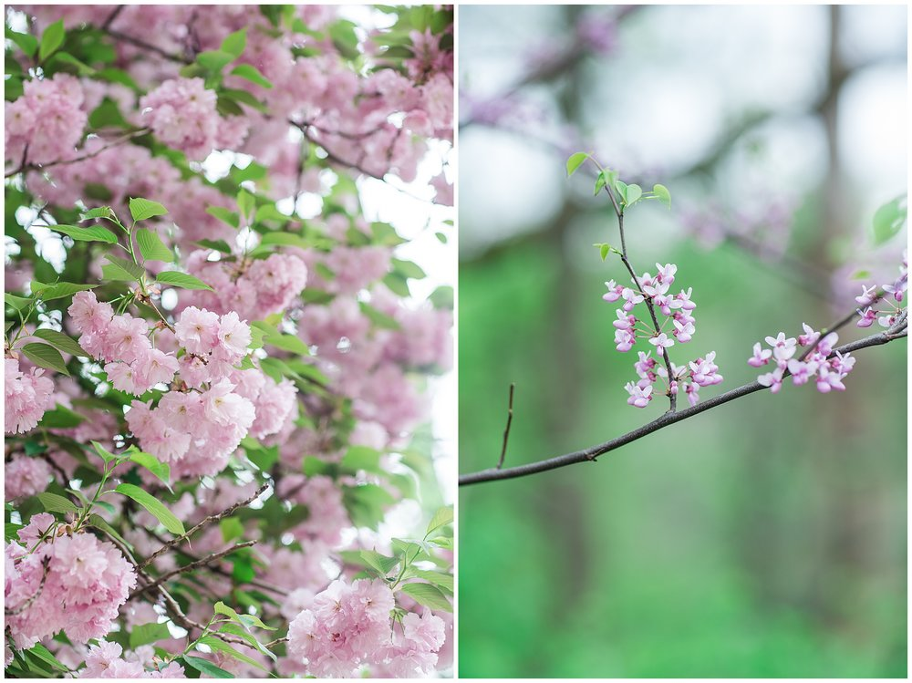 SpringWalk_0060.jpg