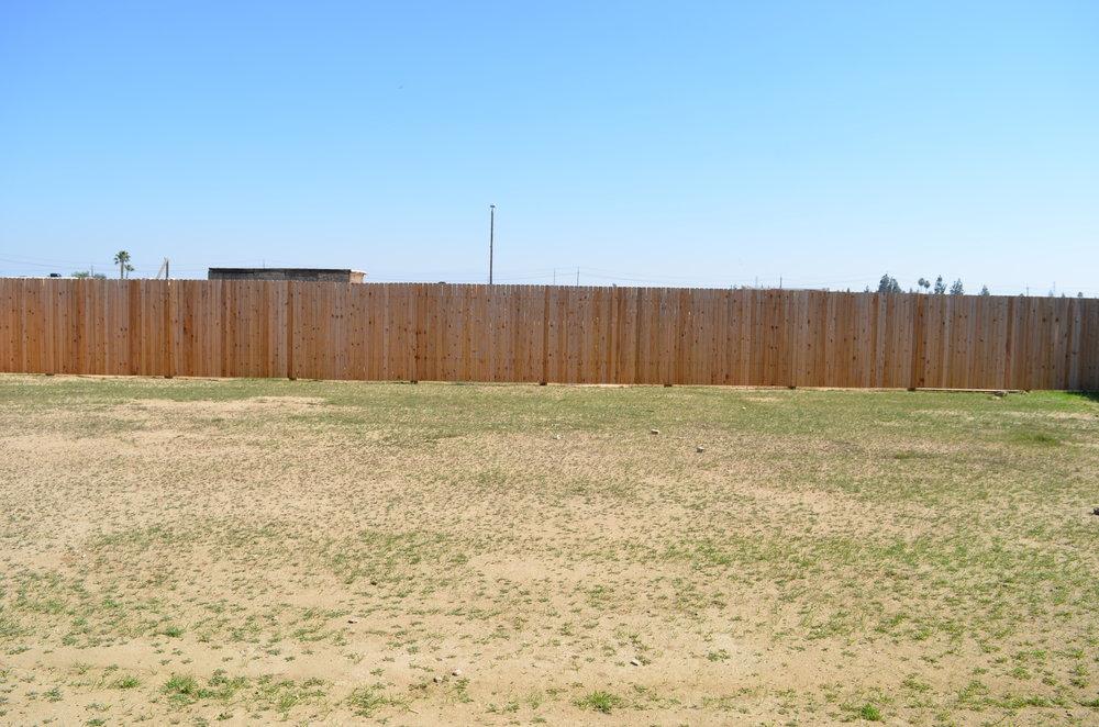 27 - Backyard.JPG
