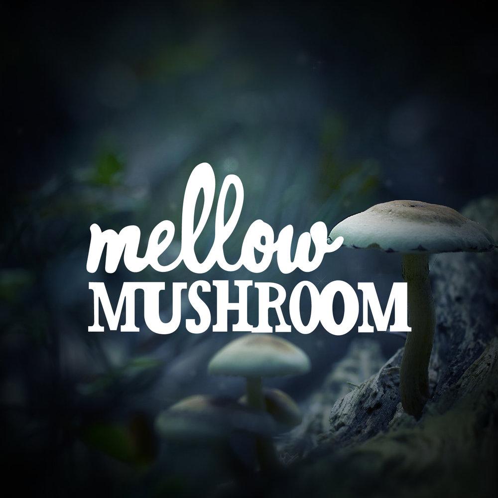 Mellow_Mushroom_Album-01.jpg