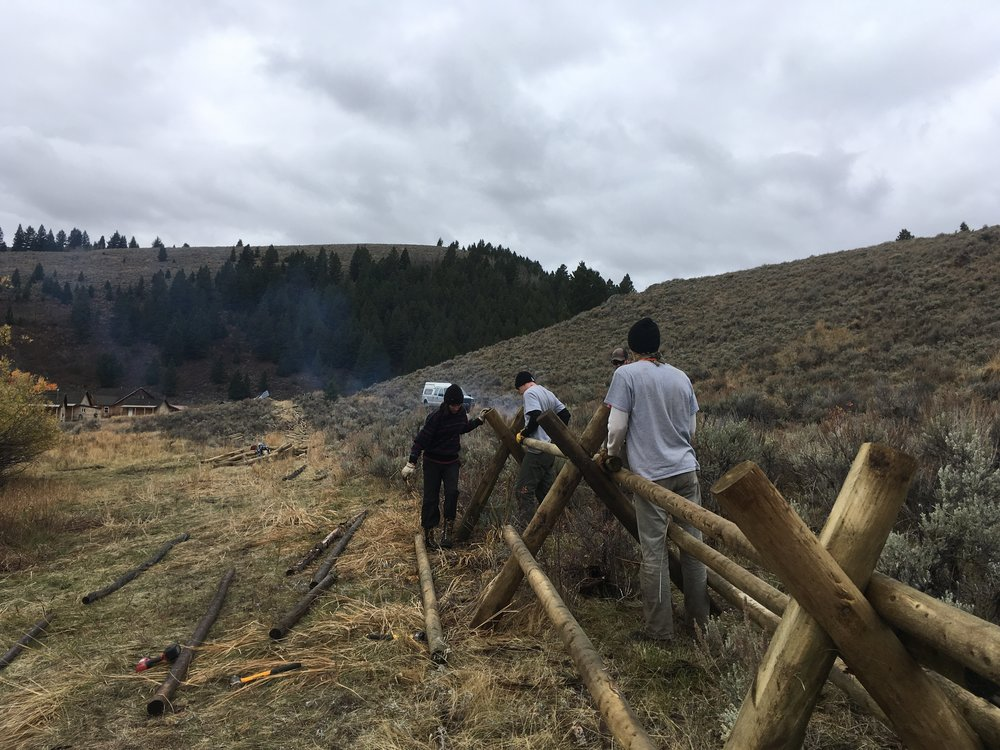 Year 23 members, Steph Wood, Jake Friesen, and Ethan Kommer, assist in constructing a new jack-leg fence at Elk Lake Resort, Lima, Montana, 2016 (Photo by Brenna Thompson, Year 23)