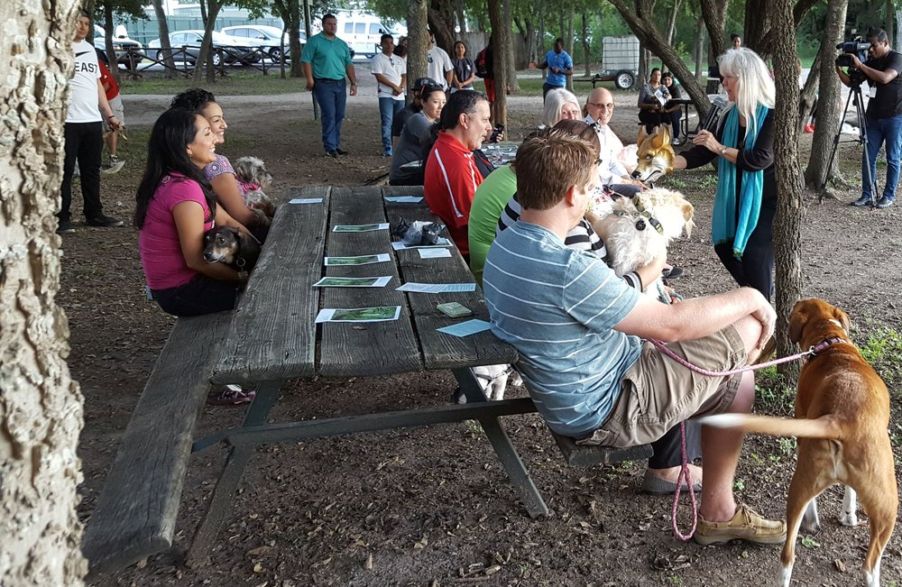 Blessing of the Animals, Oct  4, 2017 — Headwaters at