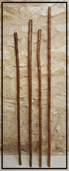 HIW walking sticks.jpg