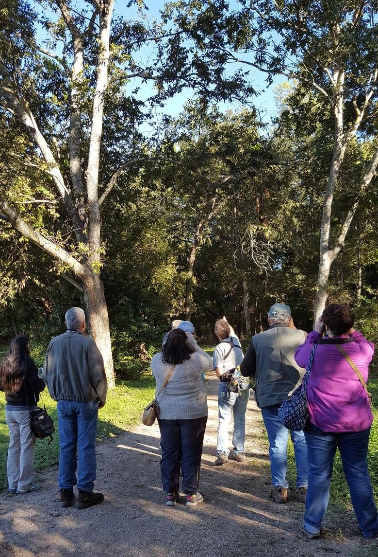 redcd Third Friday Birding Oct 21-2016 Christine Turnbull guide.jpg