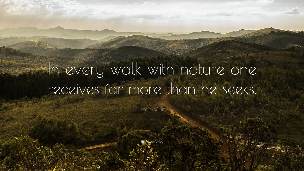 9061-John-Muir-Quote-In-every-walk-with-nature-one-receives-far-more.jpg