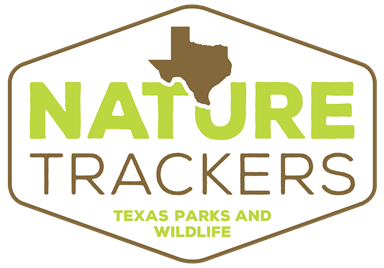 LOGO_Nature Trackers.png