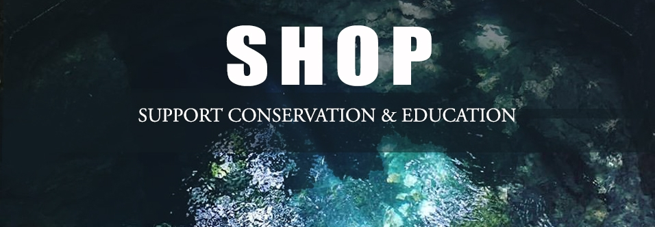 Shop-Banner.jpg