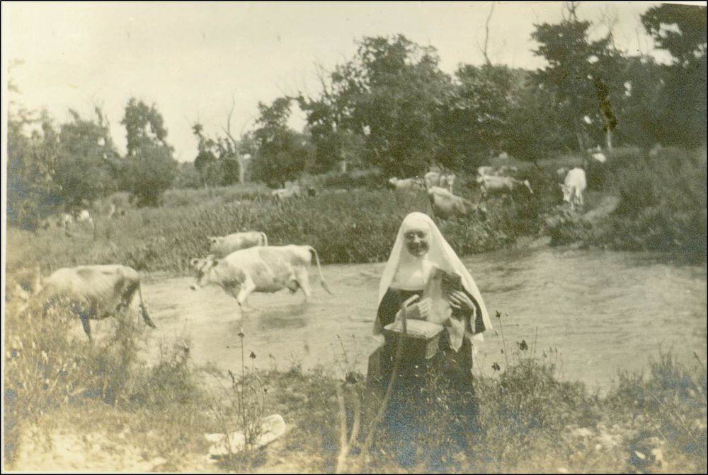 1915 Sister with cows.jpg