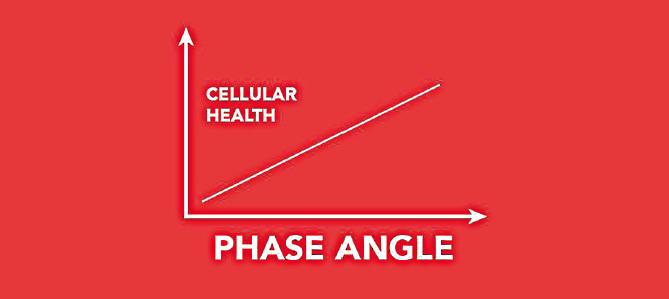 PEMF phase angle.PNG