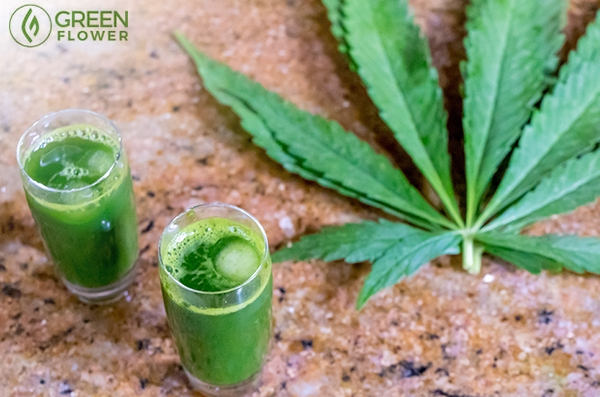 7 Ways to Incorporate Raw Cannabis into Your Diet