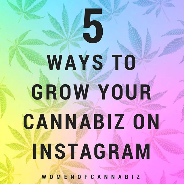 Shared this on @womenofcannabiz but sharing here too ✨5 Ways to Grow Your #Cannabiz on Instagram✨ This a free guide I created on five ways to organically grow your following, reach new audiences, and increase your impact. - What does it cover? - 🎯How to set up your Instagram account for success 🗣How to attract, real, targeted followers 🌎How to reach new audiences and skyrocket your growth 💚How to build deeper relationships with your fans across channels 📊How to track your results to see what's working and what's not - 🤳Download link in bio 🔗