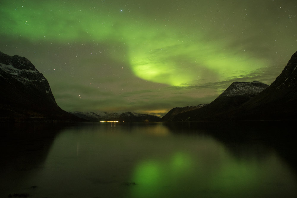Magic at the fjords