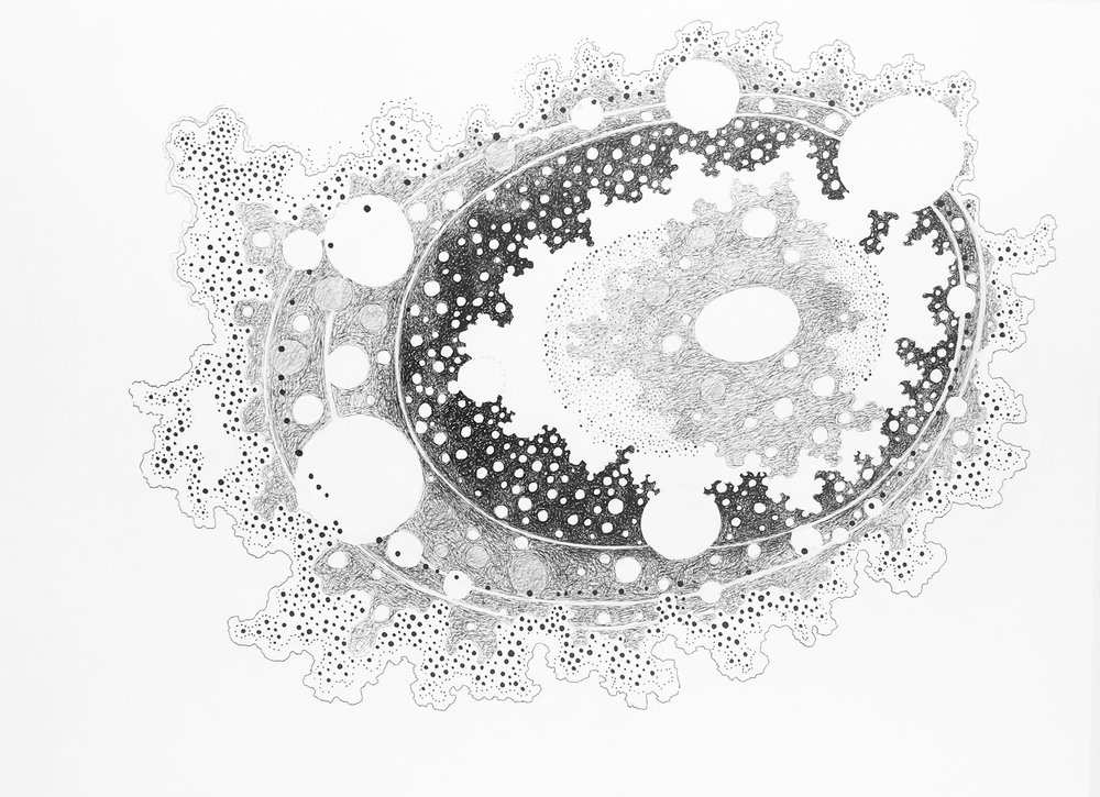 Ball Points XIII    22 x 30 inches   Ink and Graphite on Paper  215