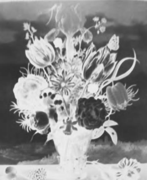 Vera Lutter ,  Ambrosius Bosschaert, Bouquet of Flowers on a Ledge, 1619: March 21, 2017,  2017 Unique gelatin silver print © Vera Lutter