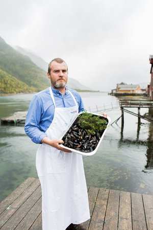 "Roderick Sloan.     Curator of ArktiskMat 2018, Aquaculture    Sea urchins are abundant throughout the Mediterranean to this day, and prized in kitchens from Sardinia to the Bodrum peninsula. In Japan,  uni  are considered one of the greatest delicacies. All those spines are, it seems, protecting something very special: inside, once you have inserted a pair of scissors into the unfortunate creature's orifice and snipped a hole around the top of its prickly carapace – boiled egg style – you will find five golden-orange ""tongues"", in fact the gonads. Best eaten raw, they taste as if mermaids made vanilla ice cream. Sloan harvests his sea urchin beds on a five-year rotation, and only ever by hand. The best examples grow on exposed rocks in rougher seas. They like the aeration apparently, but this is also the most dangerous place to dive. ""On a 'washing machine' day a big wave can push you upside-down into the rocks and you can end up not being able to see your oxygen bubbles,"" he says. ""I've had white-outs where I have floated for five minutes not knowing where I was. ""You know, I spend every day with them,"" he says. ""I have bits of their spines embedded in various parts of my body. I came here to make money from them years ago, but then I fell in love."""