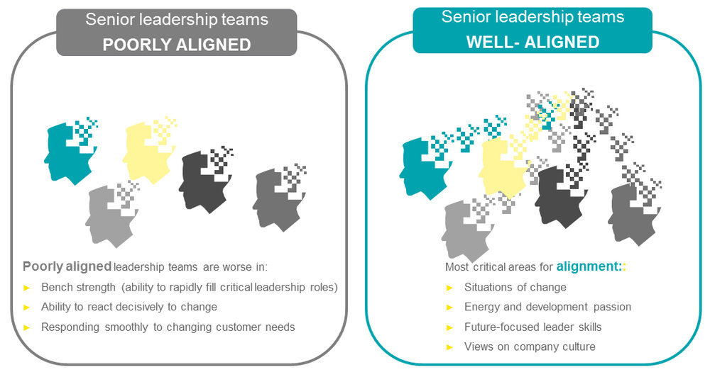 EY - Leadership Alignment graphics | source: ey.com