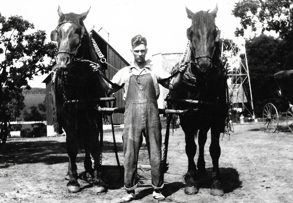 Caleb Almquist with prized team of percherons